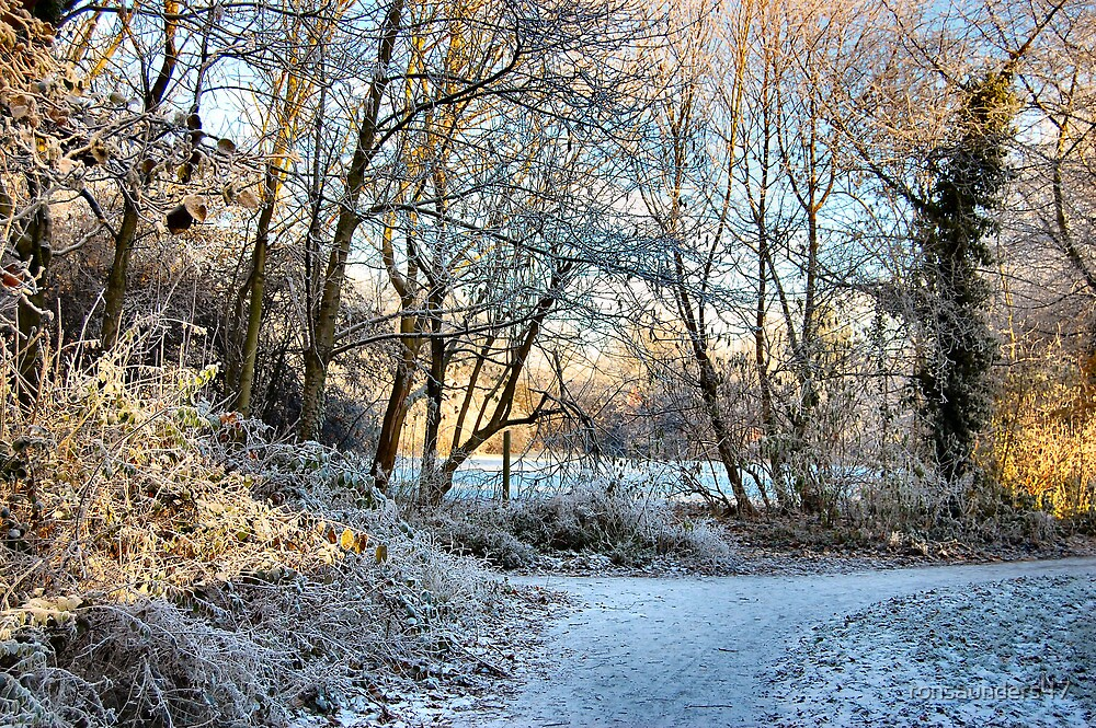 Frosted Footpaths.2 by ronsaunders47