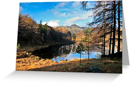 A Wonderful View of Blea Tarn by Trevor Kersley
