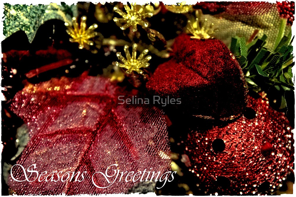 Seasons Greetings Card  by Selina Ryles