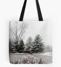 Winter Pond Tote Bag