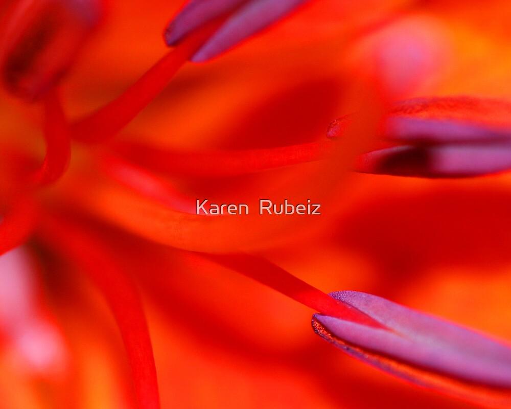 Orange Blast by Karen  Rubeiz