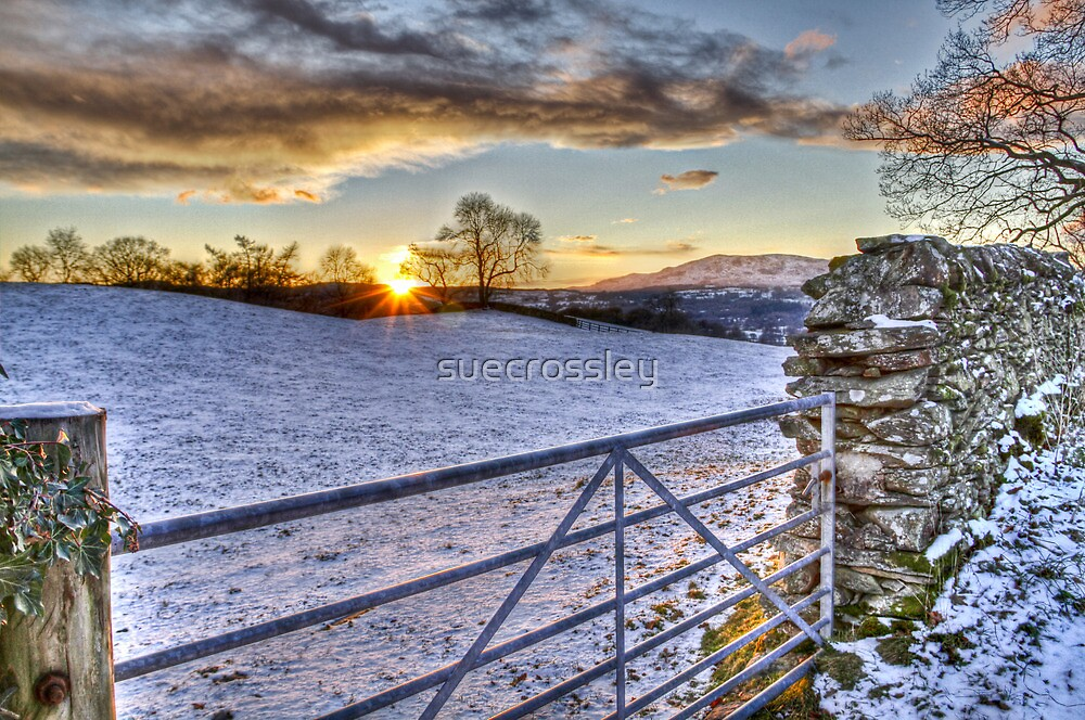 Winter scene - country gate by suecrossley