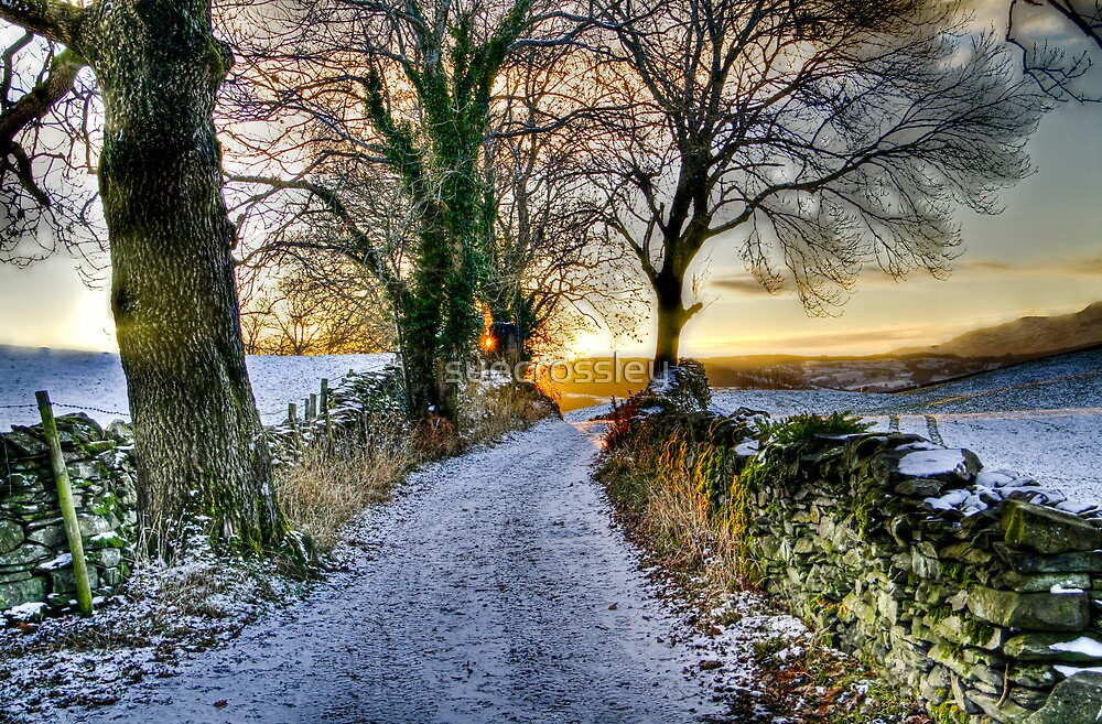 country lane - winter by suecrossley