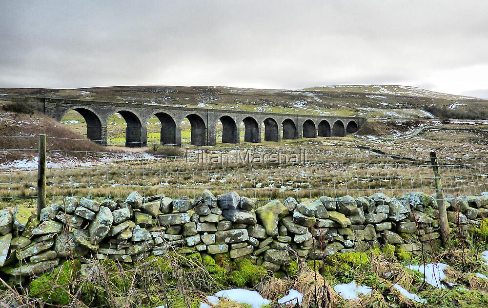 Dandry Mire Viaduct. by Lilian Marshall