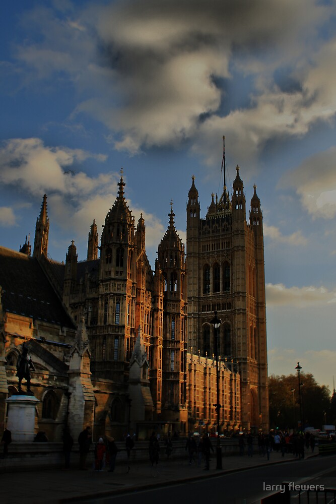 Palace of Westminster  by larry flewers