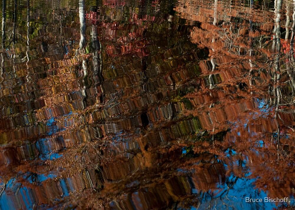 Rag rug reflection by Bruce Bischoff