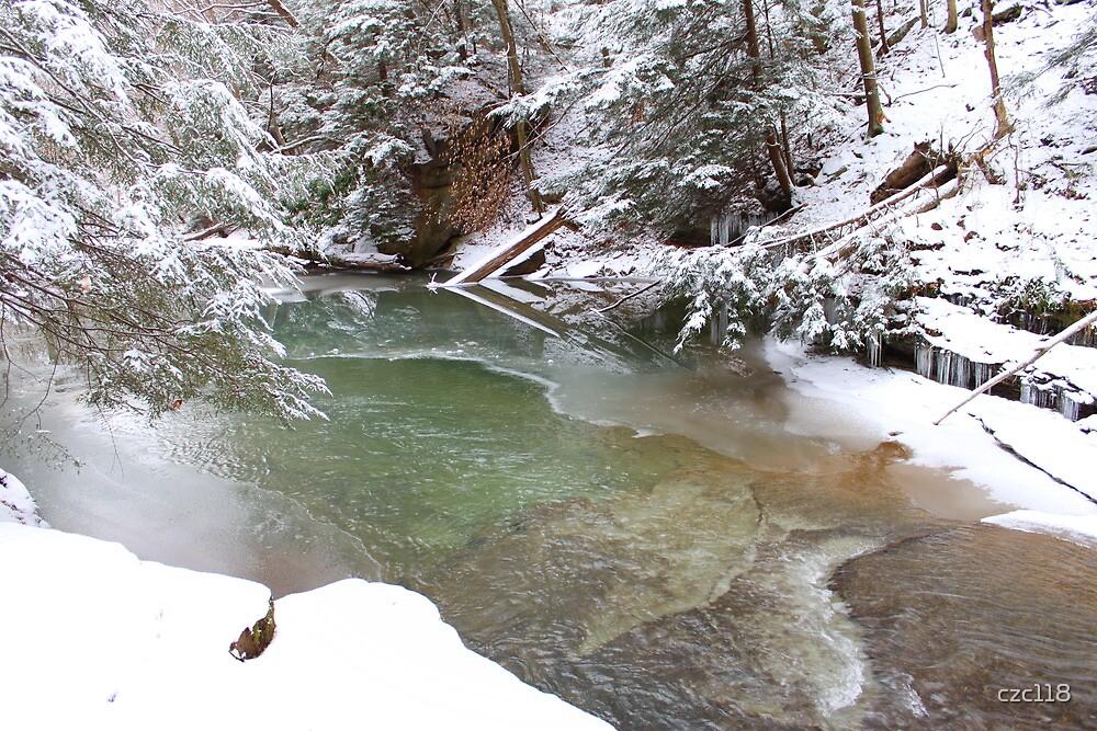 Winter Pond Reflection by czc118