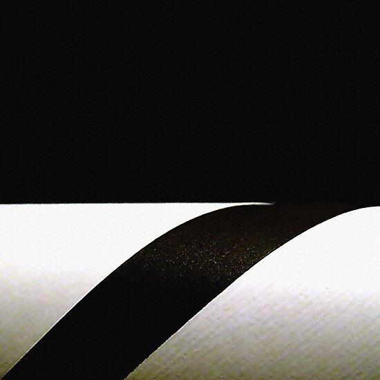 Black&white by Bluesrose