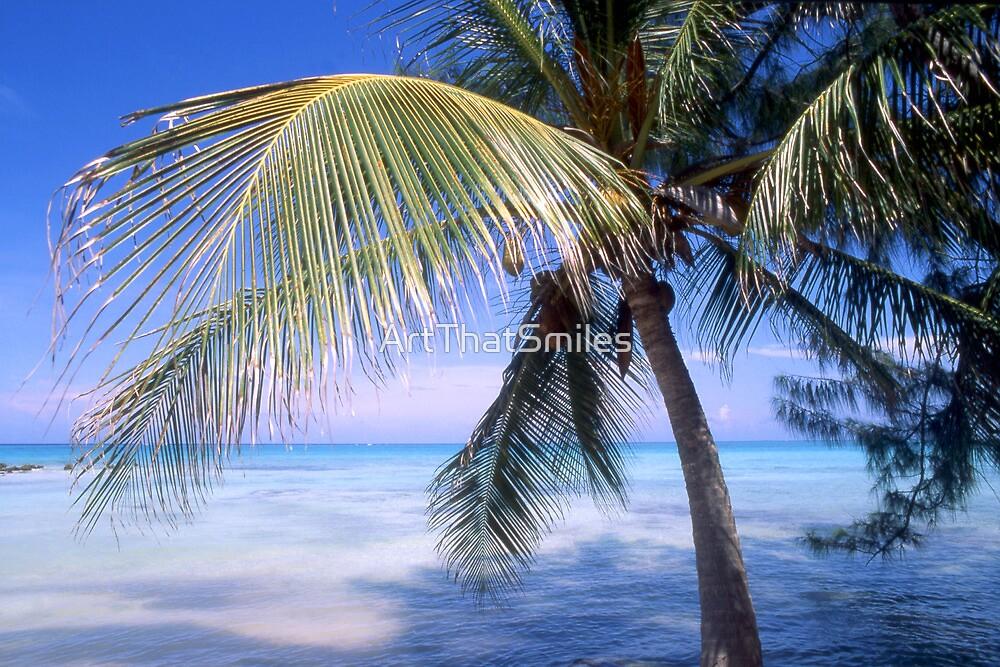 """Caribbean Breeze"" - palm tree in Nassau, Bahamas by ArtThatSmiles"