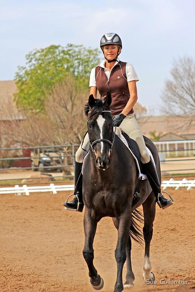 Dressage Rider by Sue  Cullumber