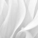 High Key Flower Petals by MikeJagendorf