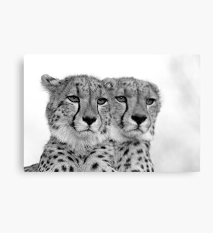 Seeing Double? Canvas Print