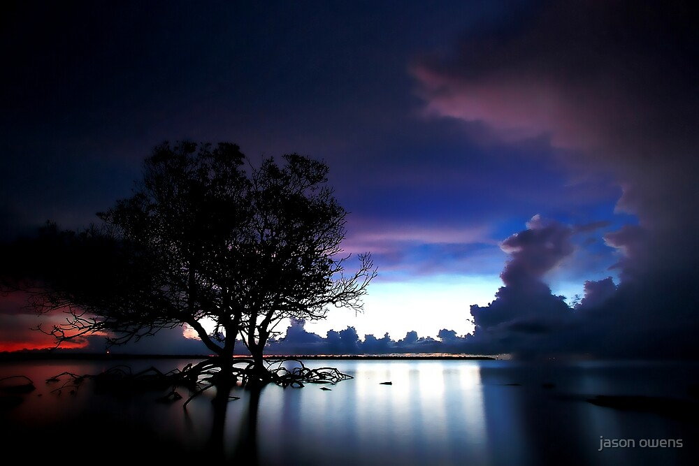 violet light  by jason owens