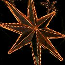 Holiday Lights - Stars by Sandra Chung