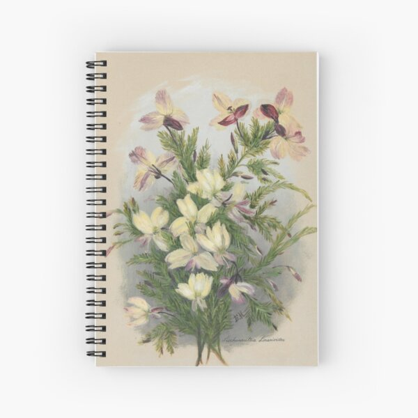 Western Australia wild flower Yellow Leschenaultia - Lechenaultia linarioides State Library of Western Australia Spiral Notebook