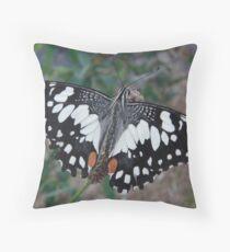 Chequered Swallowtail (Papilio demoleus sthenelus) - Coromandel Valley, South Australia Throw Pillow