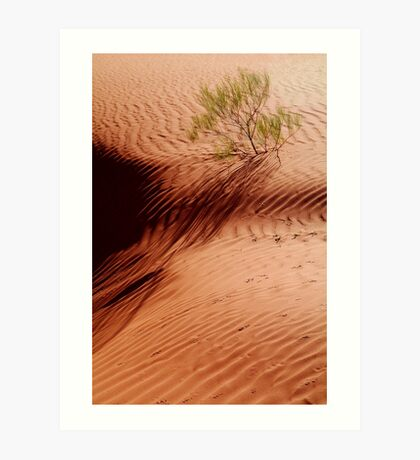 I will Survive!...Simpson Desert Art Print