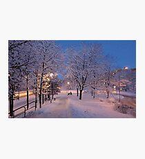Winter In Suburbia I Photographic Print