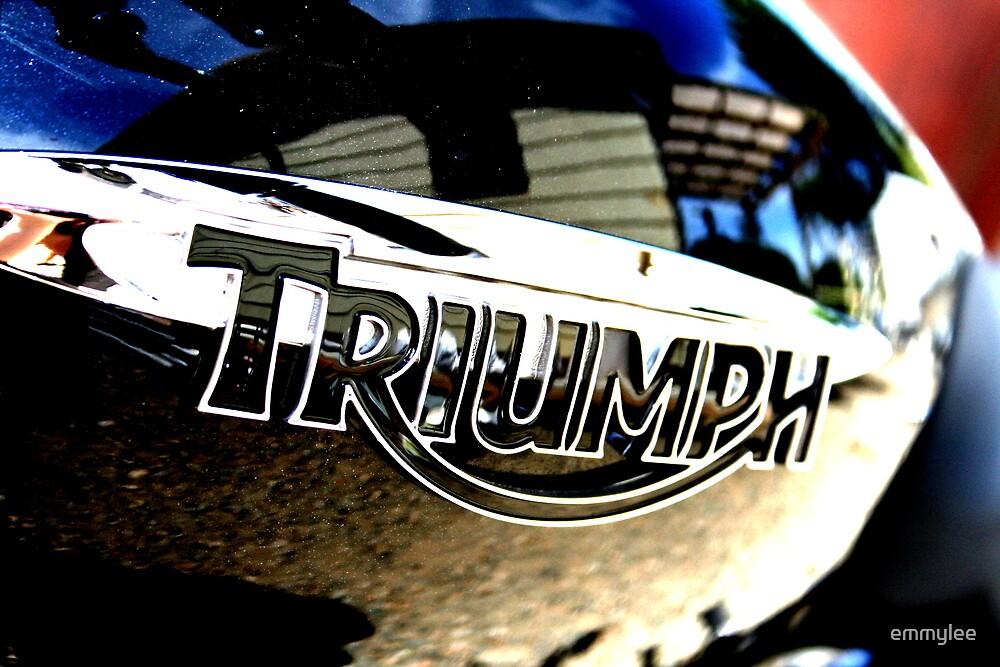 Triumph 3 by emmylee