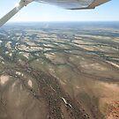 Cooper's Creek, Western Queensland by Andrew Mather