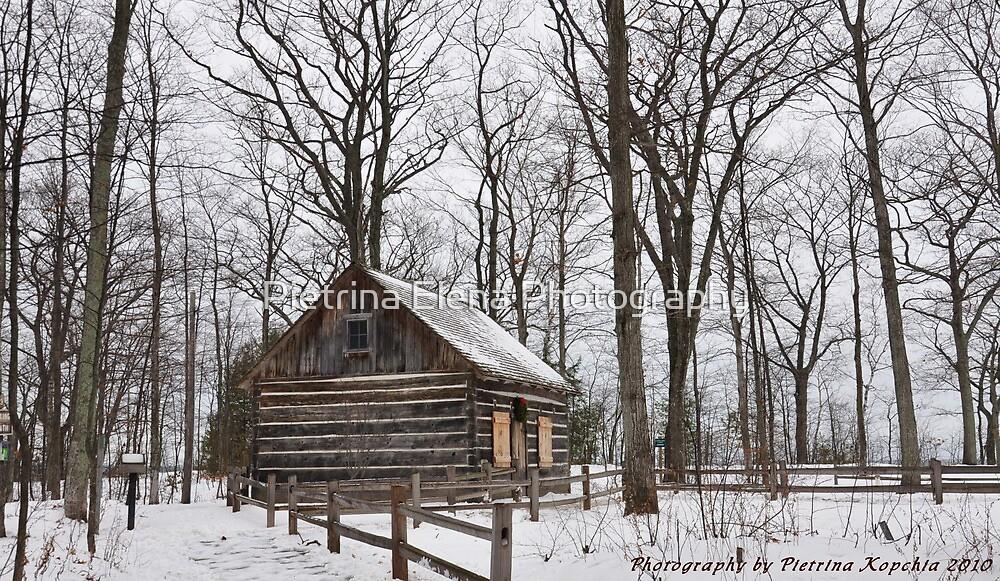 Hesler Log House by Pietrina Elena Photography