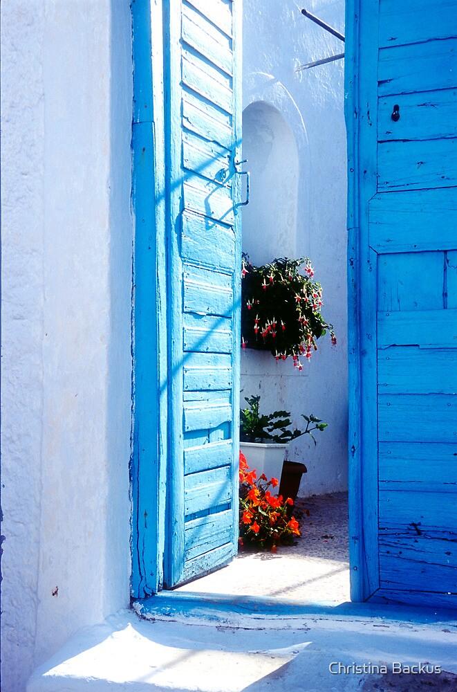 Bright Blue Door by Christina Backus