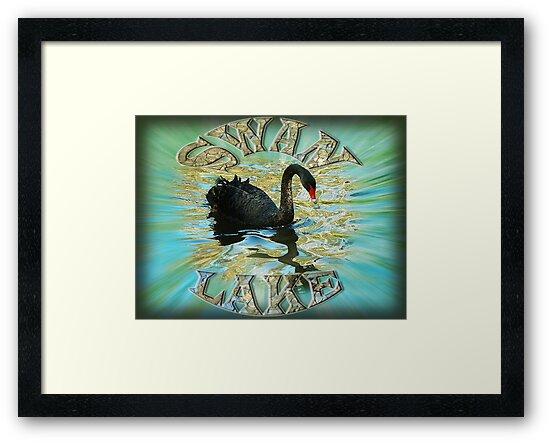 Swan Lake by Carol Berliner