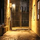 Alley1 by CallinoisArt