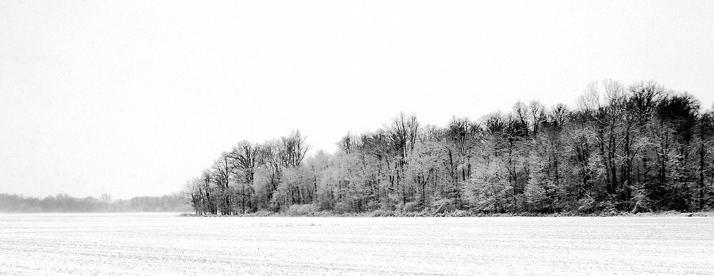 121210-105   A CERTAIN BEAUTY IN DESOLATION by MICKSPIXPHOTOS