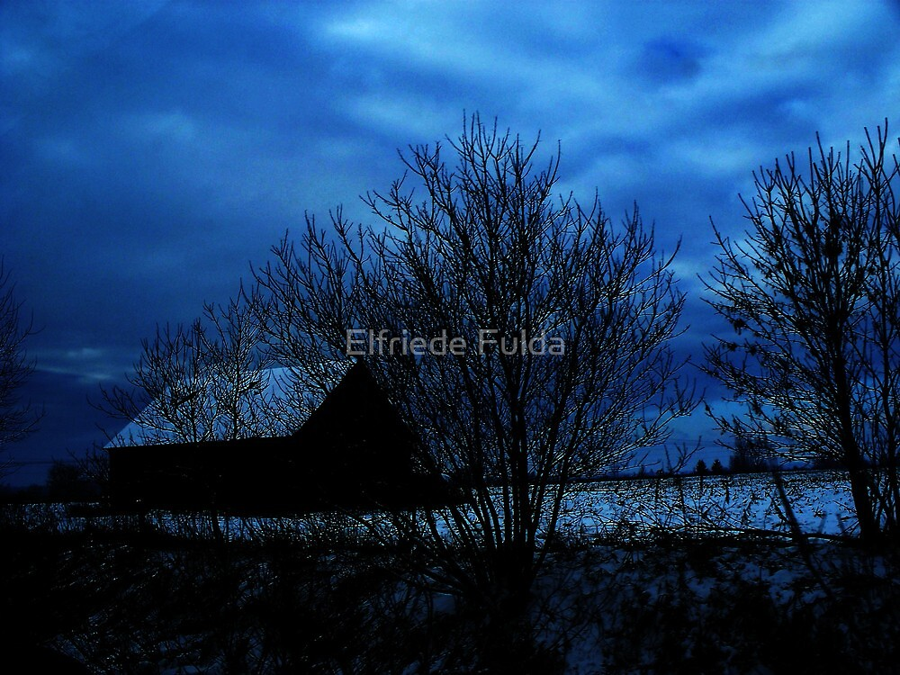 """Cool Blue"" by Elfriede Fulda"
