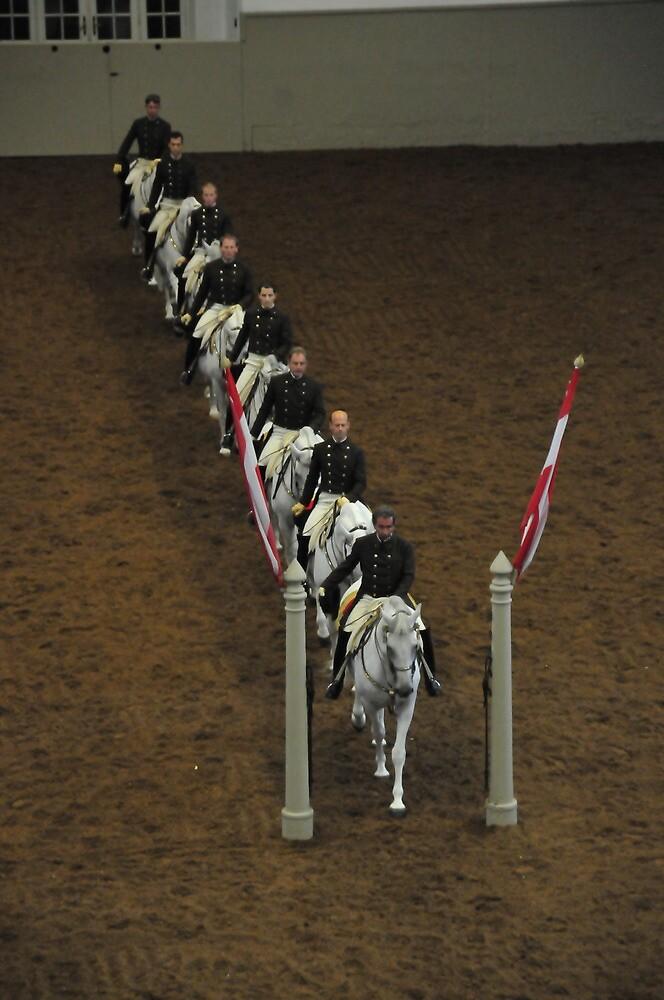 The Lippizan Stallions by Bertspix1