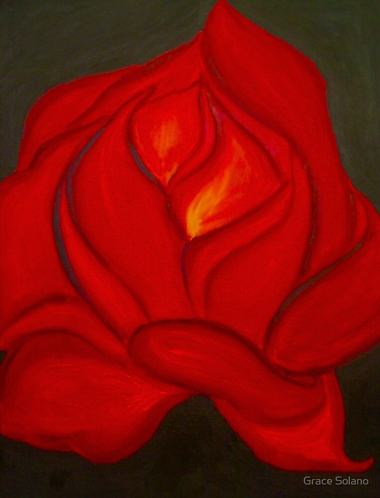 Gypsy Rose by Graciela Maria Solano