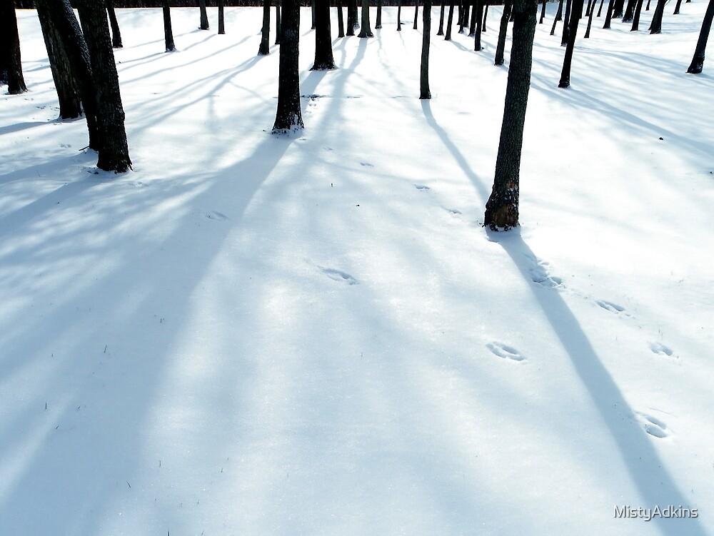 Snowy Deer Tracks by MistyAdkins