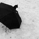 Cat and Umbrella by MistyAdkins
