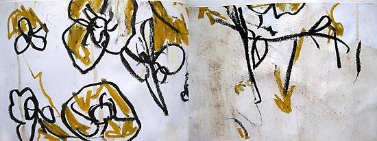 some yellow flowers by John Douglas