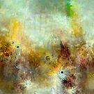 Pain in Birds by linaji