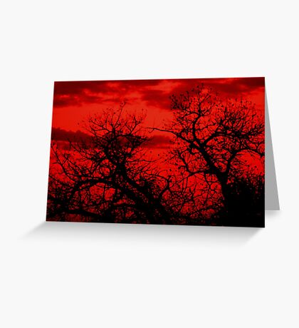 Blood Red Sky Greeting Card