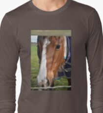 LOOKING THROUGH THE FENCE T-Shirt