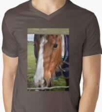 LOOKING THROUGH THE FENCE Men's V-Neck T-Shirt