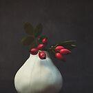 Rosehips in Vase by Sybille Sterk