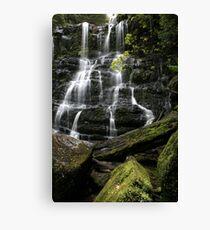Nelson Falls, Tasmania, Australia Canvas Print