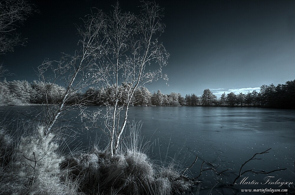 Frozen Moods at Thursley by Martin Finlayson
