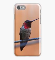 Annas Hummingbird iPhone Case/Skin