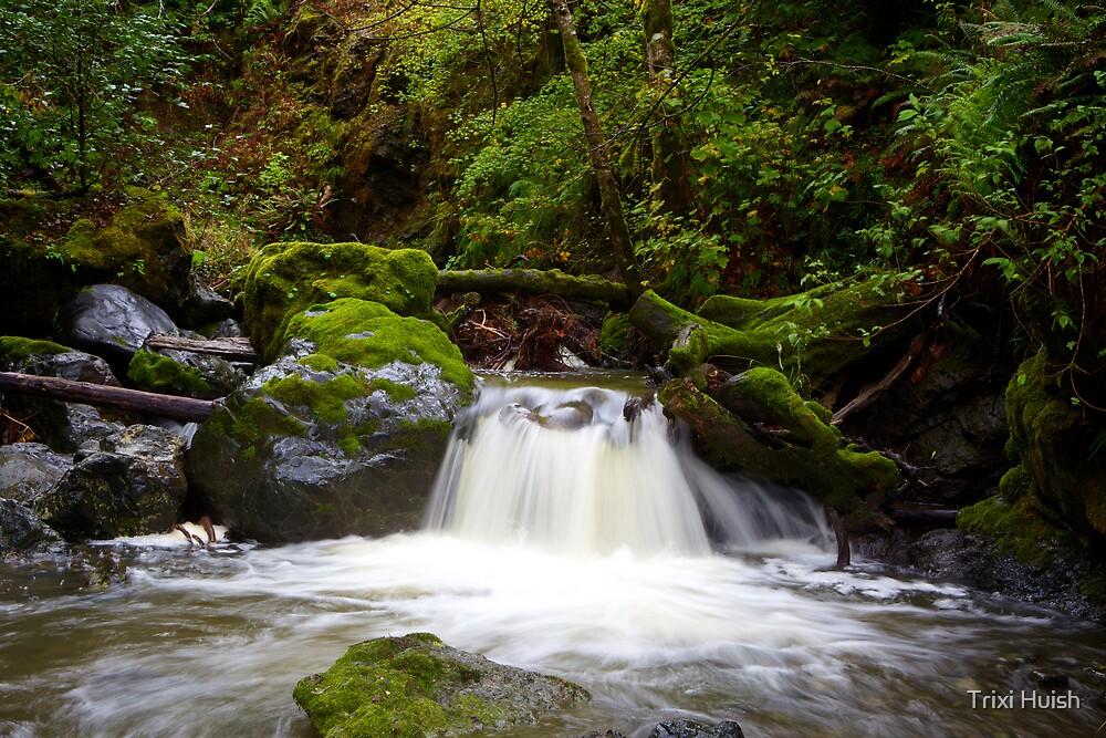 Indian Creek Waterfall by Trixi Huish