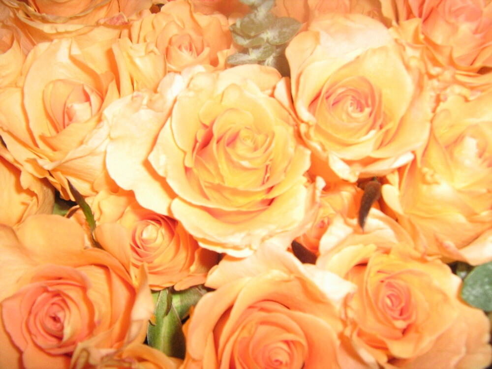 flowers of love by ceciperu