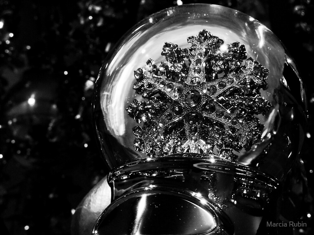 Snowflake Globe  by Marcia Rubin