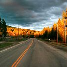A Road Runs Through It  by Dave Hampton