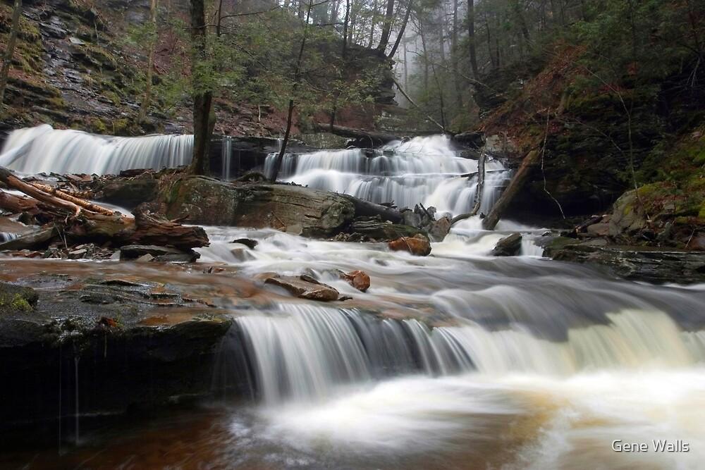 Delaware Falls in the April Morning Mist by Gene Walls