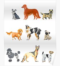 Favorite Dog Breeds Poster