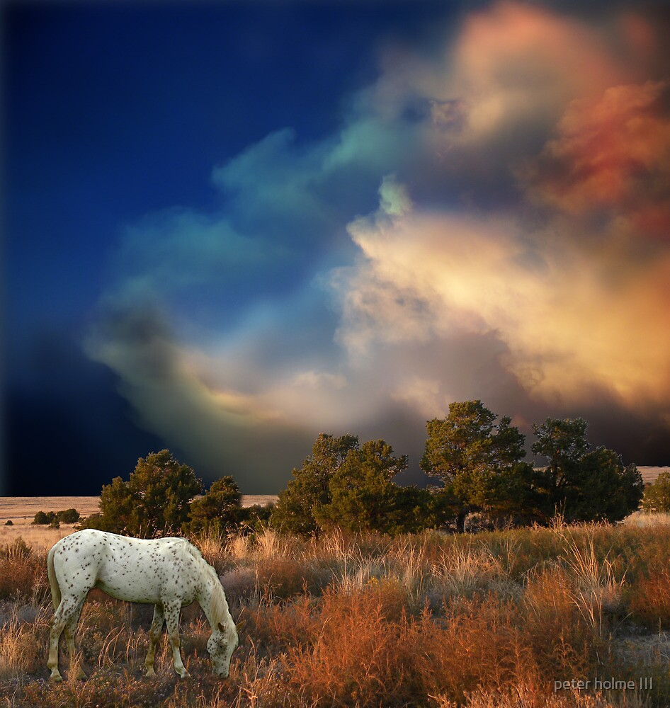 1389 by peter holme III